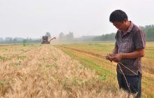 Beijing is delicately super-sizing the country's farms
