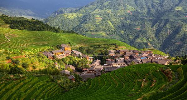 China's agricultural paradigm shift